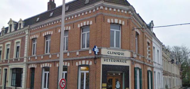 Depuis 1975, la clinique vétérinaire du Jeu de Paume est à votre service. La clinique est située 141 place du Maréchal Foch 62400 Béthune. Nous vous proposons des consultations sans […]