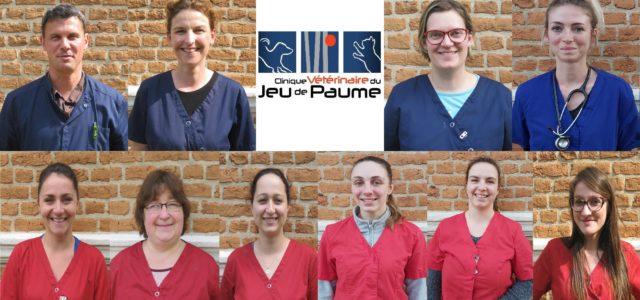 Vétérinaires Docteur Luc DUBOIS Docteur Laure POULAIN Docteur Aurélie BOUCHE Docteur Fany VAILLANT Auxiliaires Spécialisés Vétérinaire Céline Christelle Claire Louise Manon Sophie